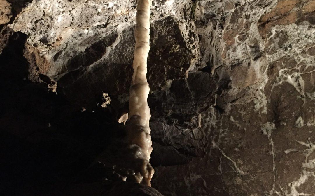 Postojnska jama in Predjamski grad